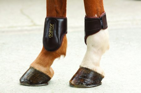 Leather Fetlock boots - back